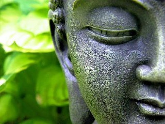 One Day Lord Buddha While Walking On A Path Stranger Could Feel The Waves Of Love Peace And Silence So Impressed By His Celestial Presence Asked